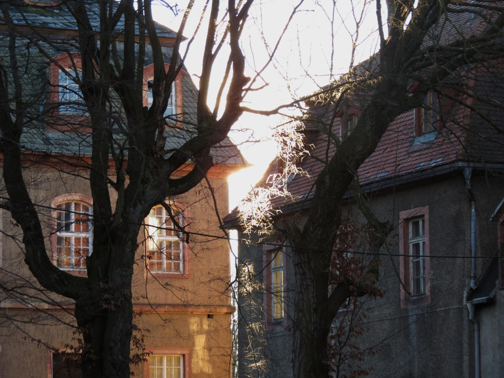 2013_Dezember_IV_Schloss_Neusorge02