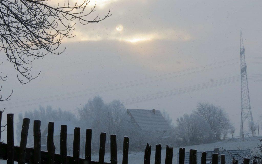 2012_januar_atze_im_schnee