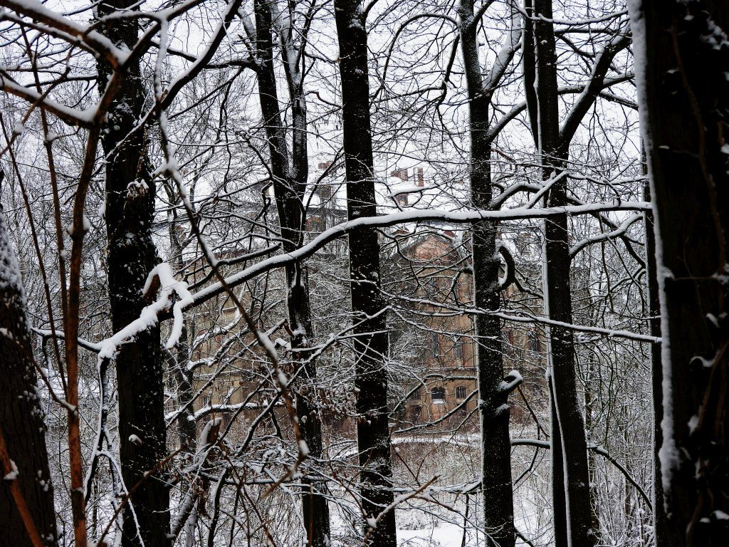 2017_januar_schloss_dorf_003_schloss_005k