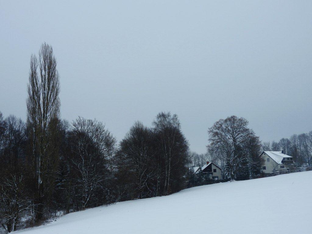 2017_januar_schloss_dorf_007_pflugi_002k