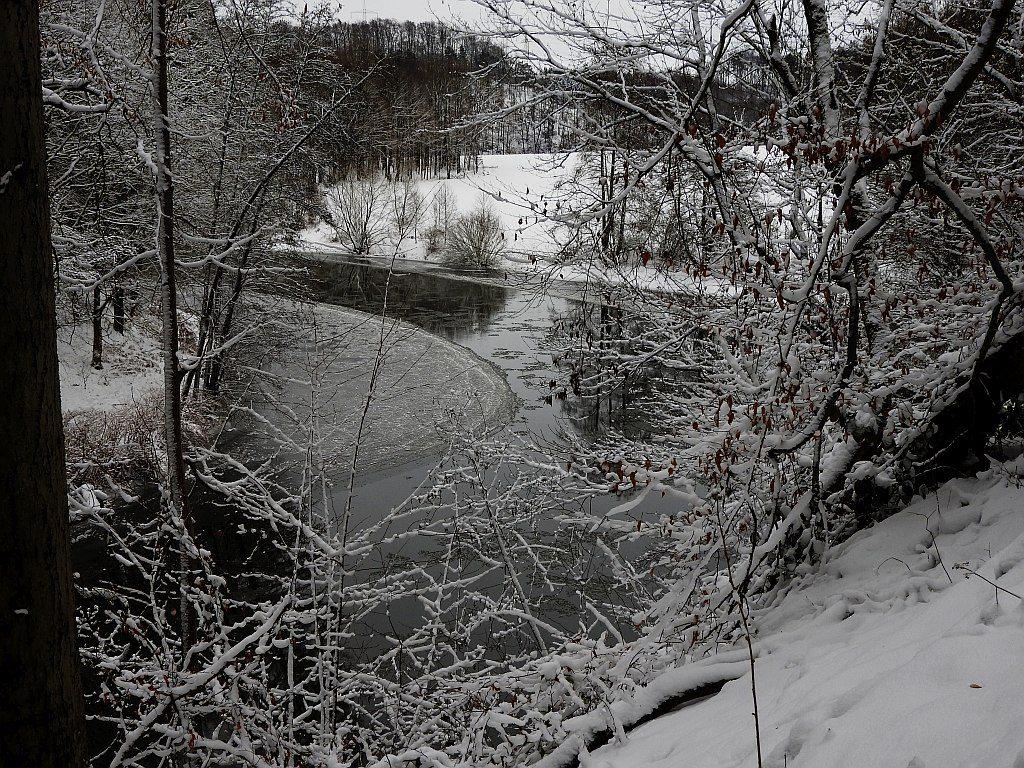 2017_januar_schloss_dorf_024_zschopau_002k