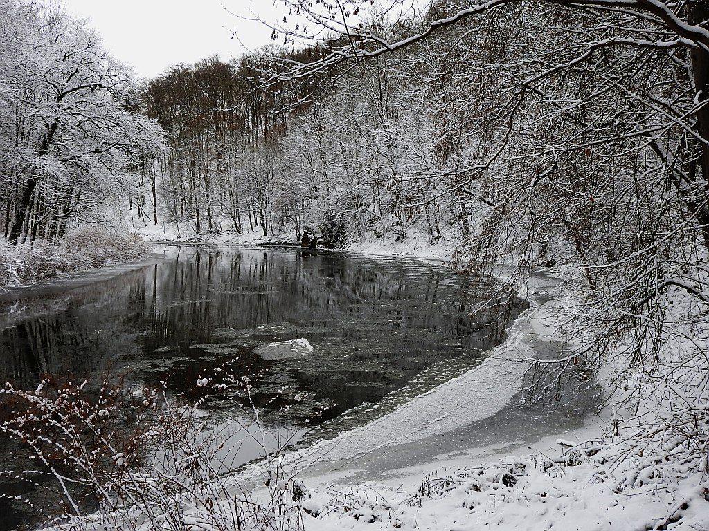 2017_januar_schloss_dorf_024_zschopau_004k